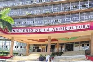 MINISTERIO DE LA AGRICULTURA