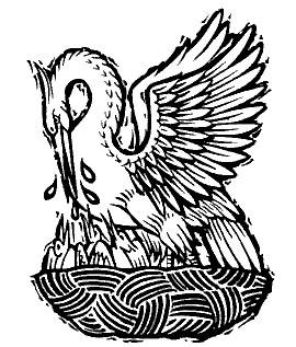 pelicano-simbolo-y-significado